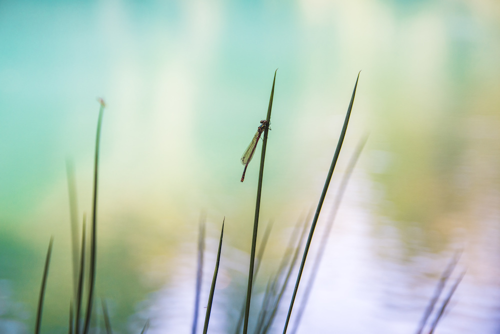 neder-silezie Meertjes Kolorowe Jeziorka