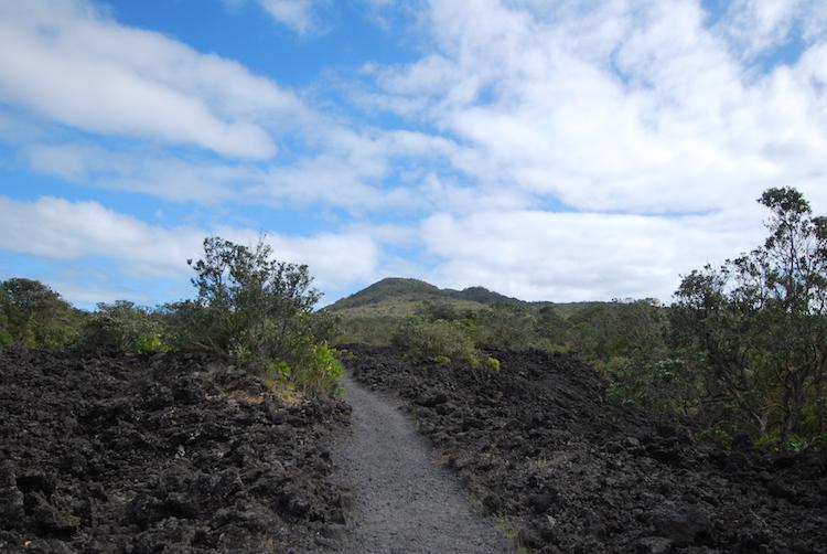 nieuw-zeeland Bezienswaardigheden noordereiland Rangitoto Island