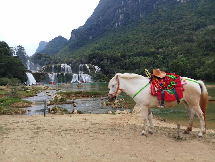 paard Ban Gioc Waterfall