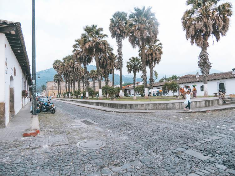 palmbomen antigua guatemala