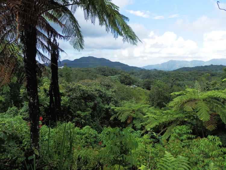 Panoramic Route caribbean puerto rico