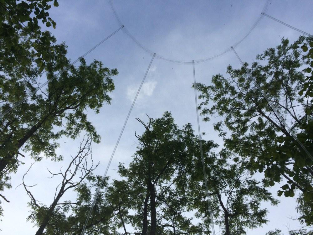 plafond-vanuit-bubble-tent-frankrijk
