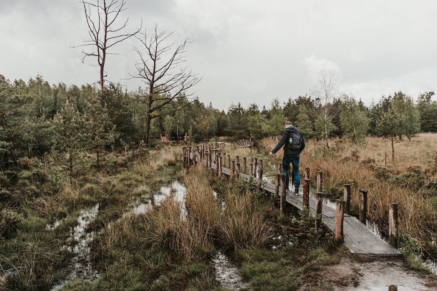 plankenpad Drenthe