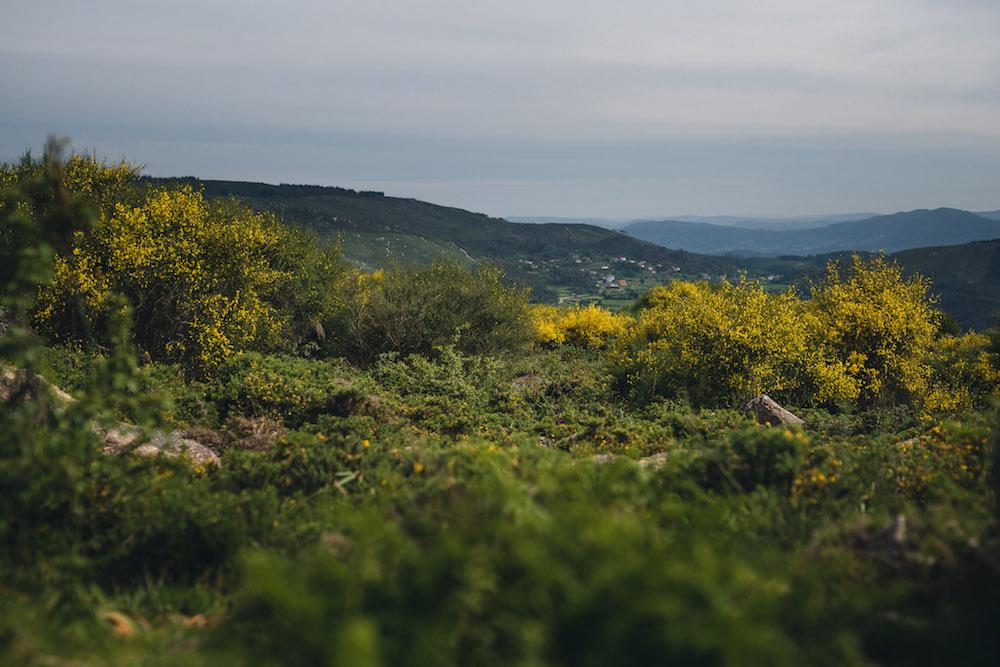 portugal wandeling eindeloze natuur