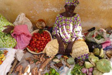 reizen naar senegal markt van ndioum