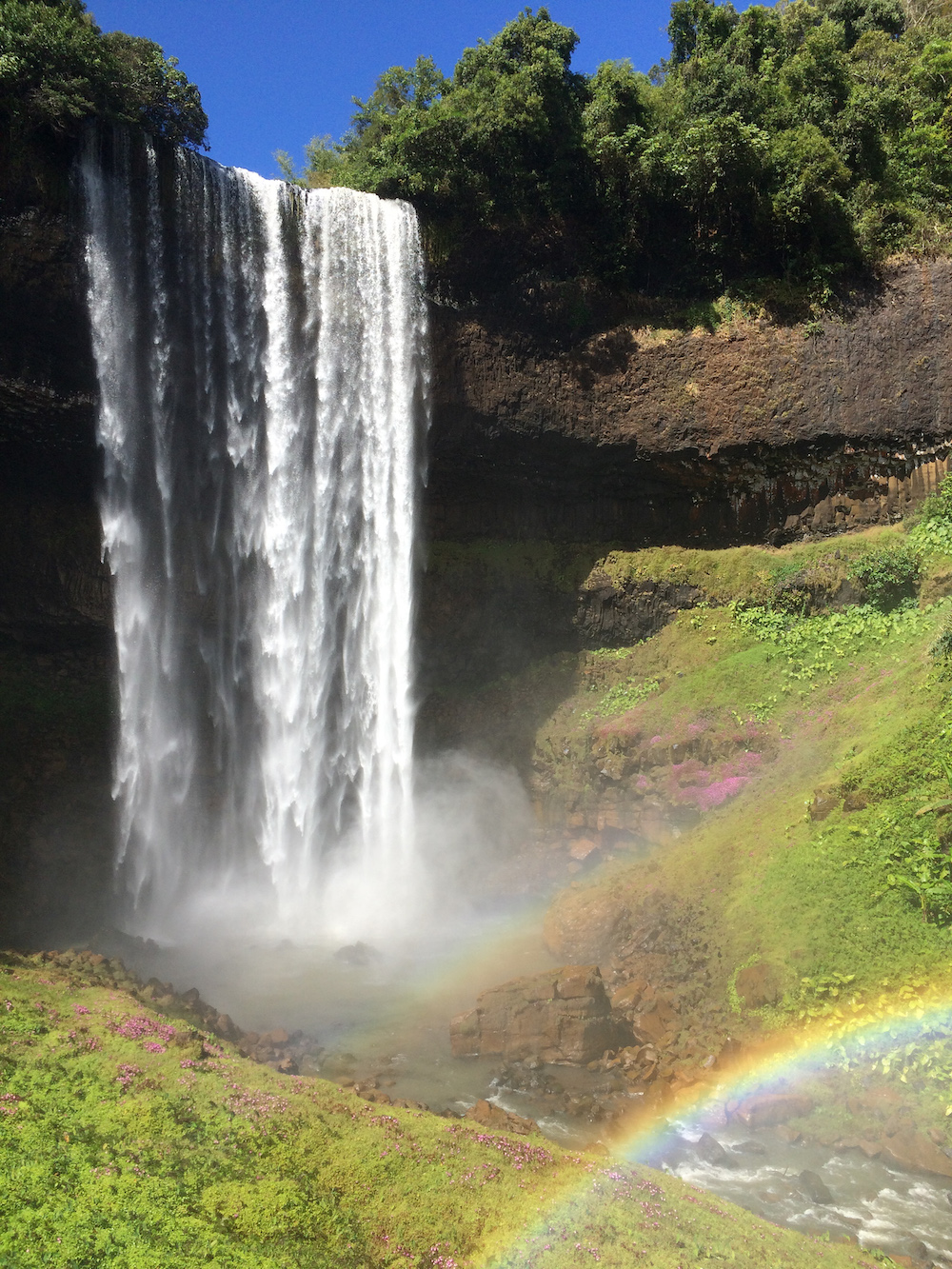 reusachtige waterval tad laos bolaven