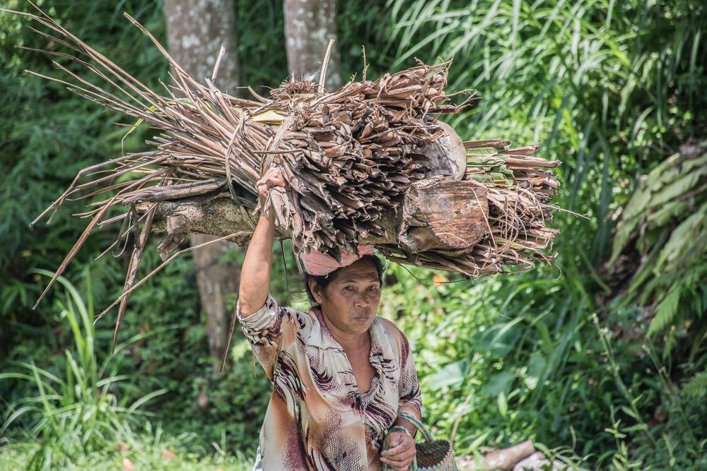 rijstvelden bali_