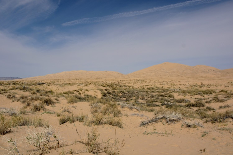 roadtrip californie arizona tips Mojave National Preserve - Kelso Dunes