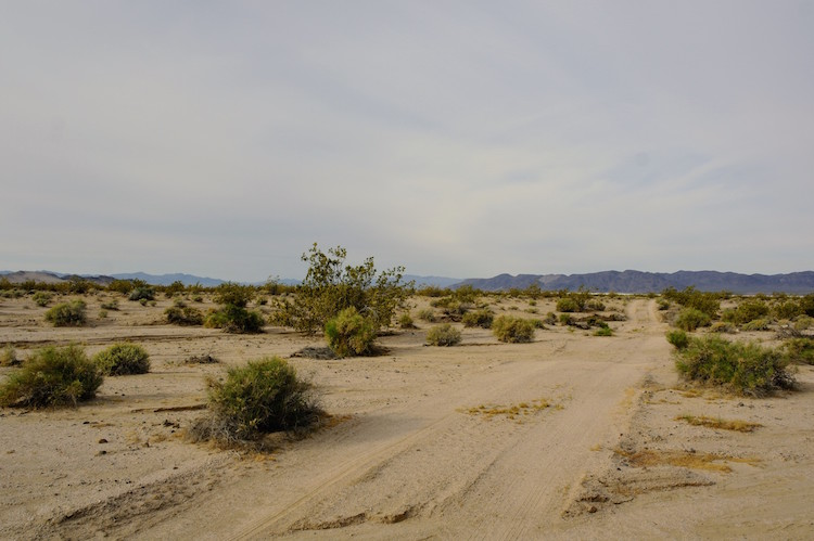 roadtrip californie arizona tips Mojave National Preserve