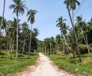 rondreis thailand zelf plannen-4