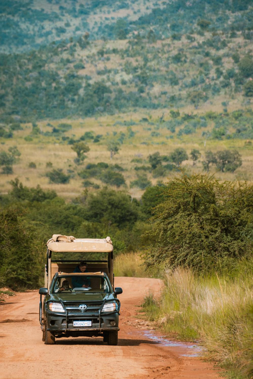 safari Pilanesberg national park