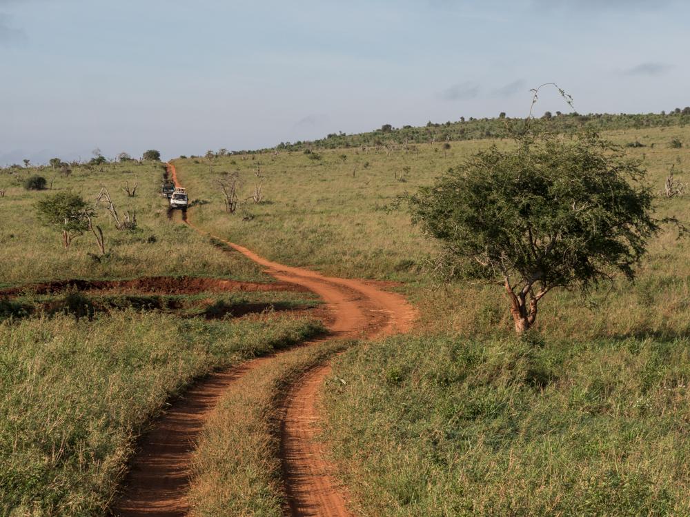 safari-Taita-Hills-kenia