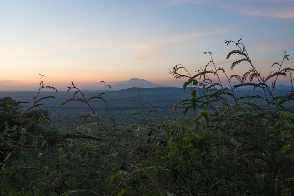 safari-kenia-salt-lick-lodge-zonsondergang-mount-everest