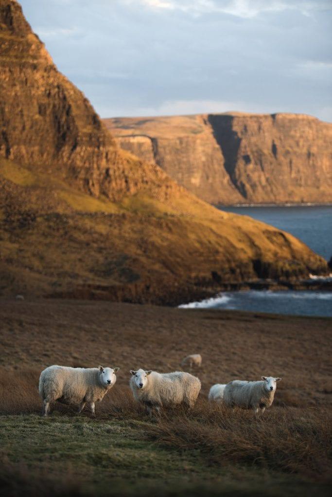 schapen Point Neist schotland