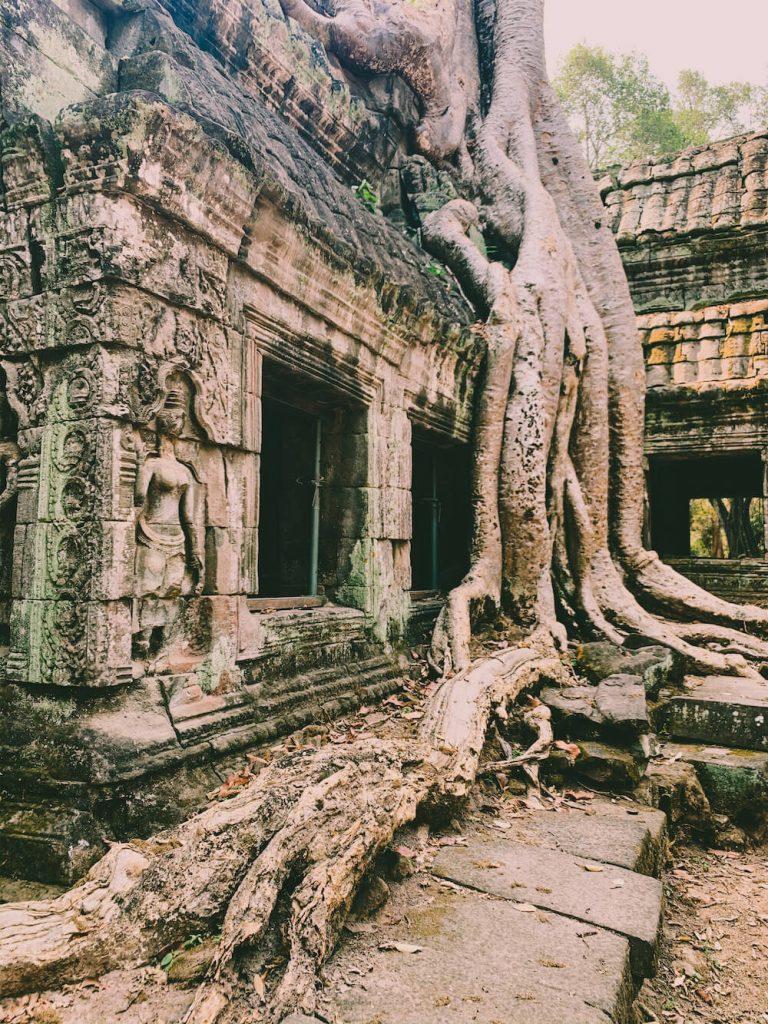 siem reap tomb raider cambodja