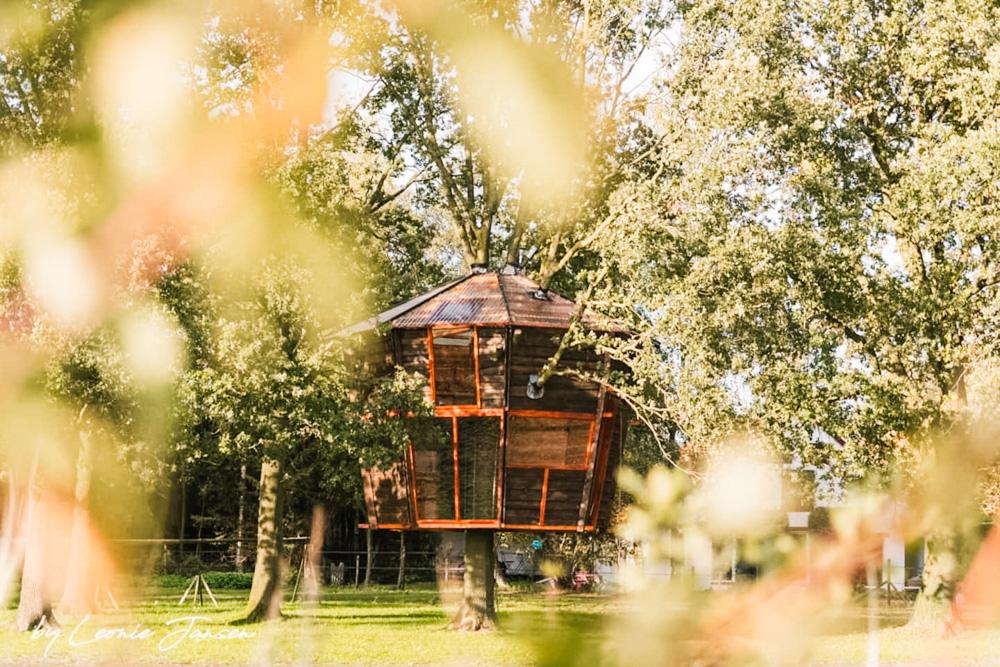slapen in een boomhut in Halle Gelderland