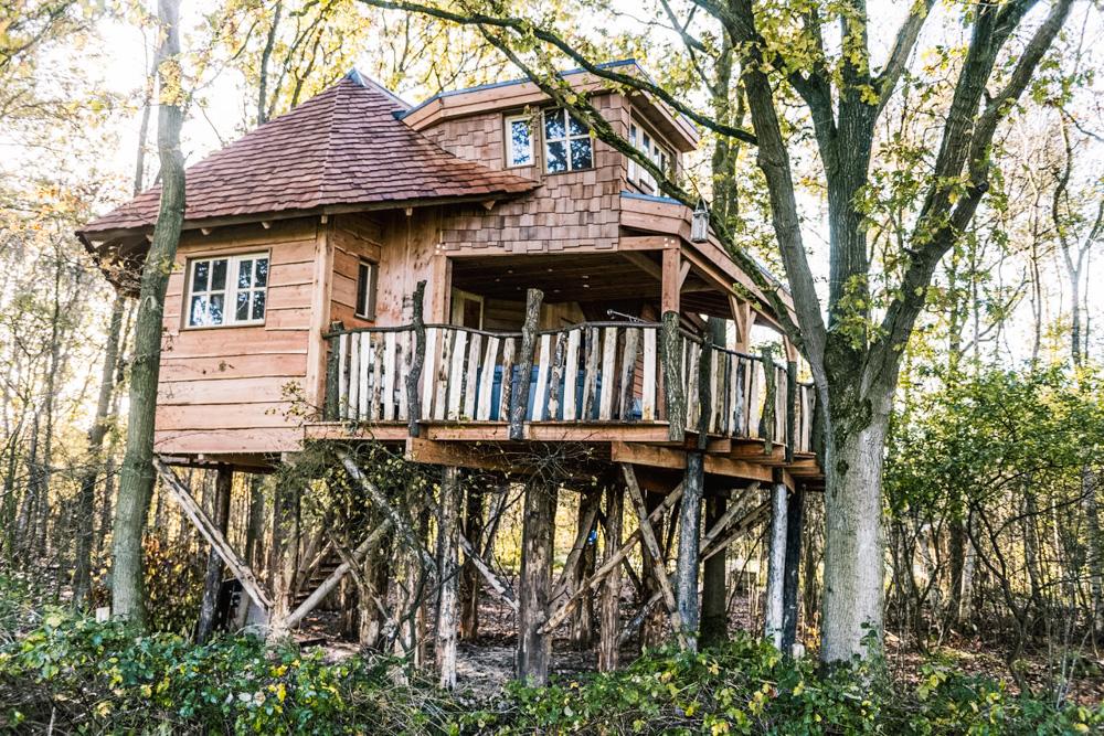 slapen in een luxe boomhut Drenthe