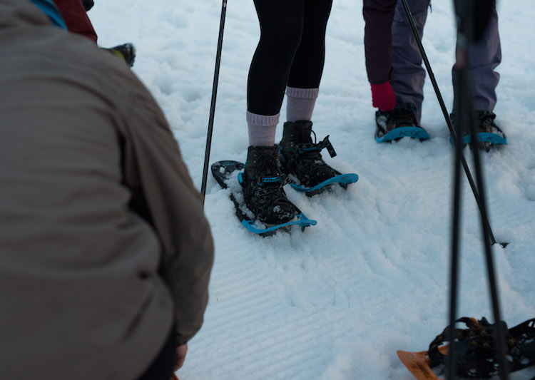 snowshoes snowshoeing kitzbuheler alpen