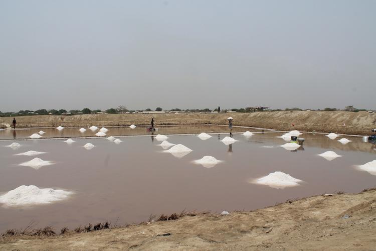 songor zoutvlaktes Ghana rondreizen