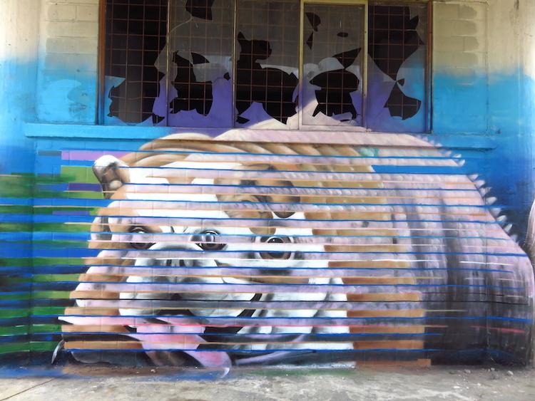 street art gent Dok 2