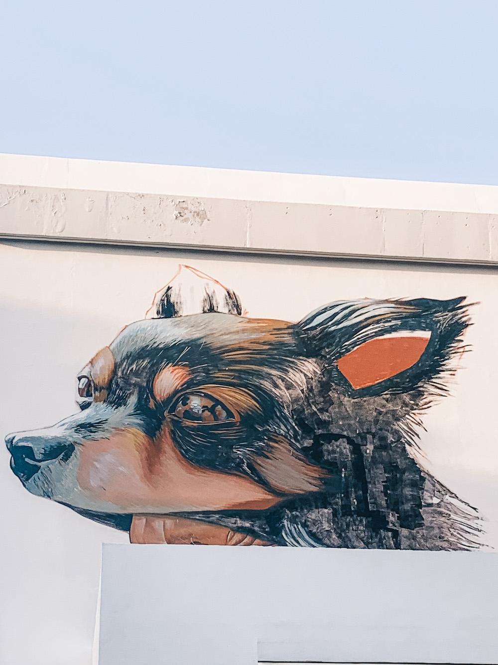 streetart campeche