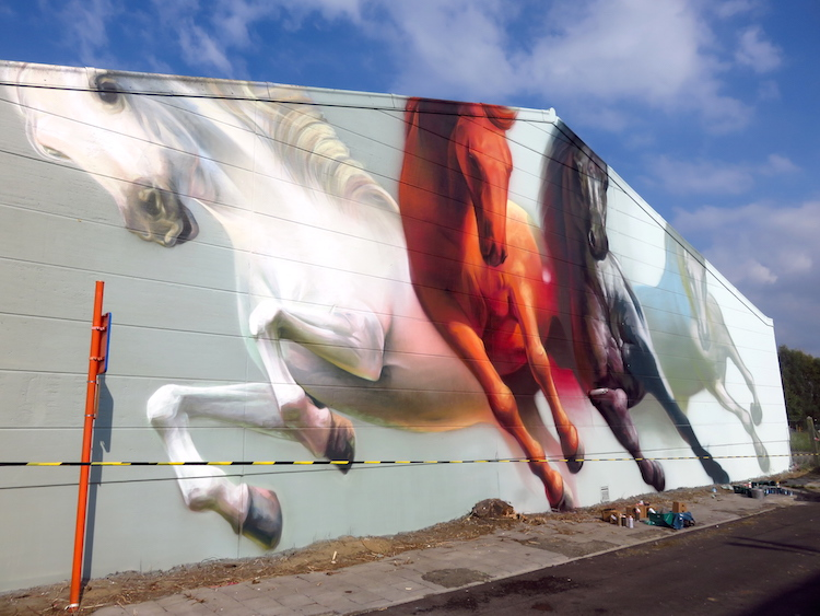 streetart gent Paardenfoto door Super_A