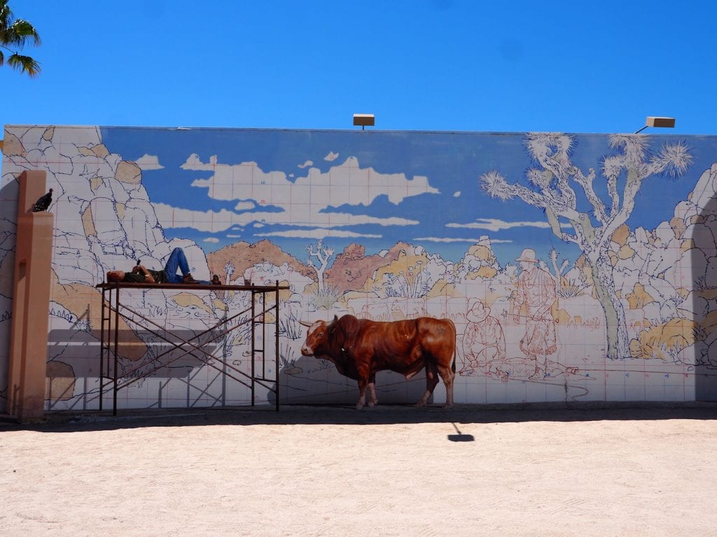 streetart in joshua tree twenty nine palms