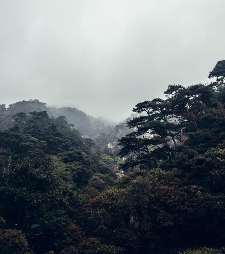 taishan natuur china heilige berg