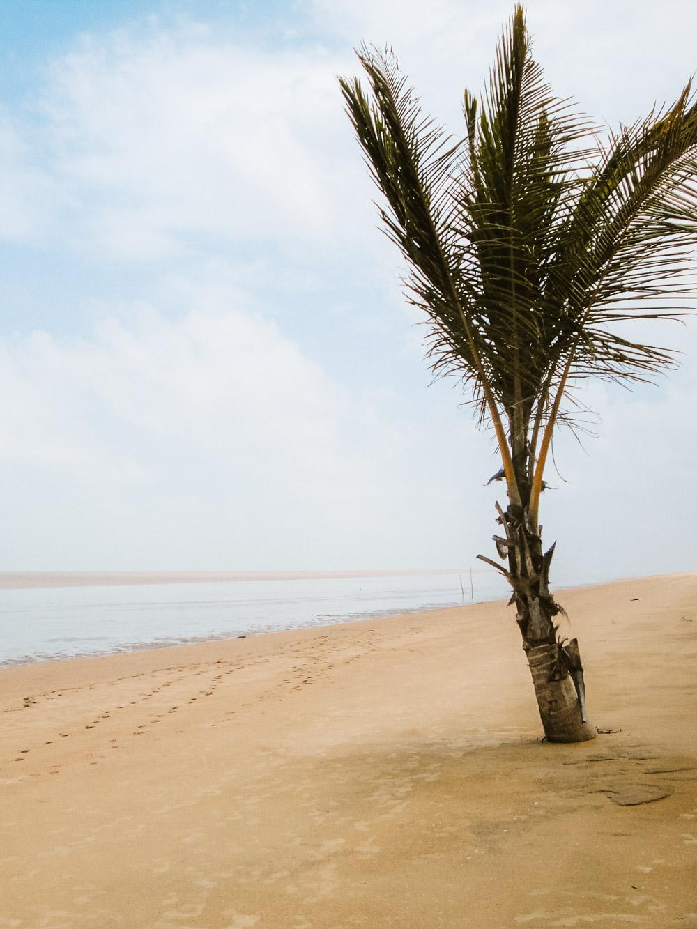 tips suriname vakantie matapica