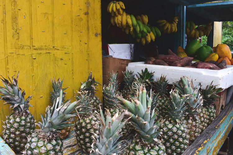 vakantie Antigua and Barbuda ananas