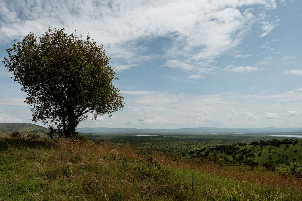 vakantie rwanda landschap