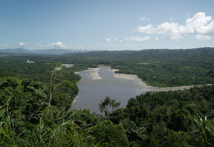 view over de manu jungle