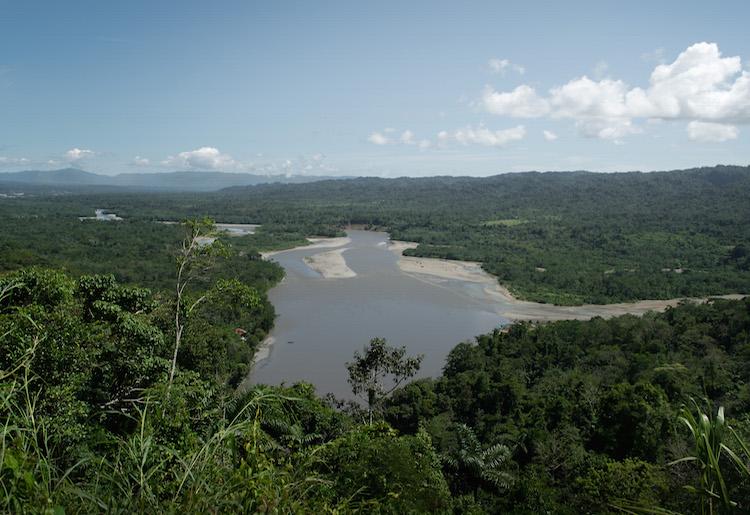 view over de manu jungle