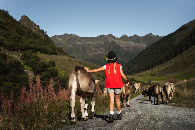 wandelaars dieren montafon oostenrijk
