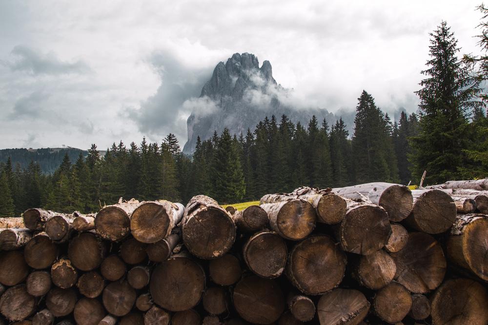 wandelen dolomieten Seiser Alm hout voorraad