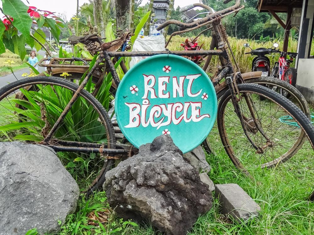 wat te doen in Ubud fiets tour_