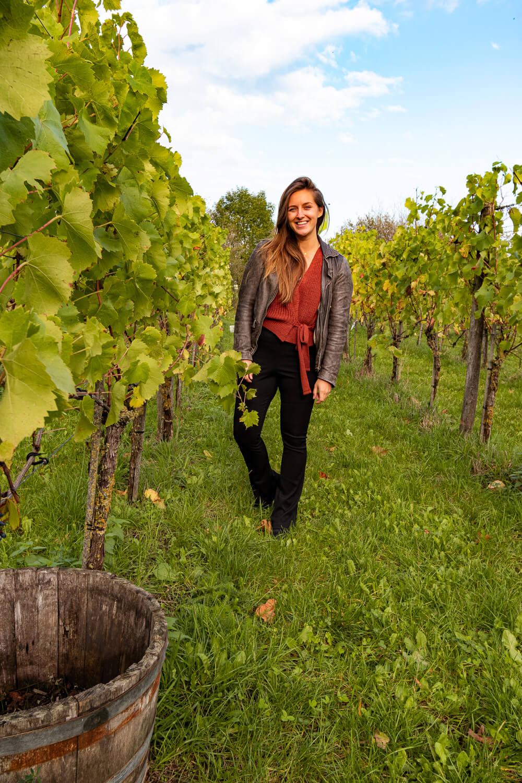 wat te doen in de Achterhoek wijngaard weekendje weg (1)