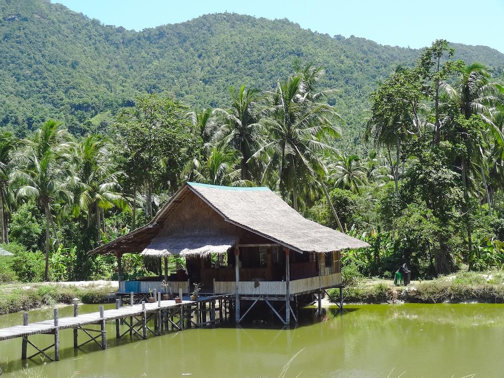 wat te doen op Koh Phangan Thailand