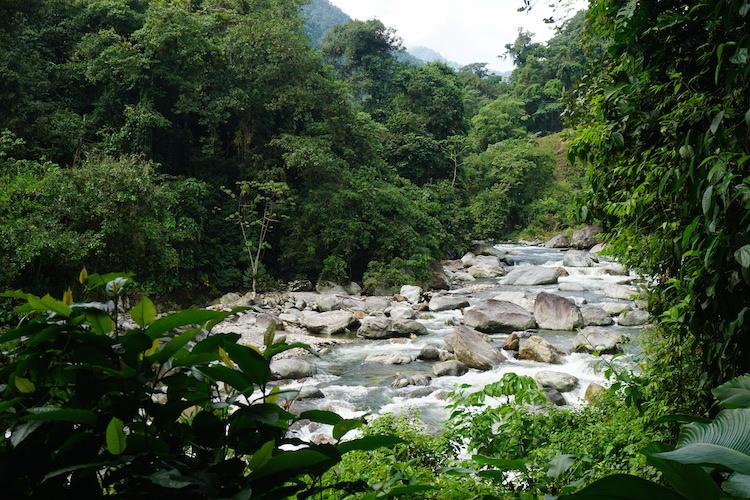 waterval tijdens hike naar verloren stad colombia