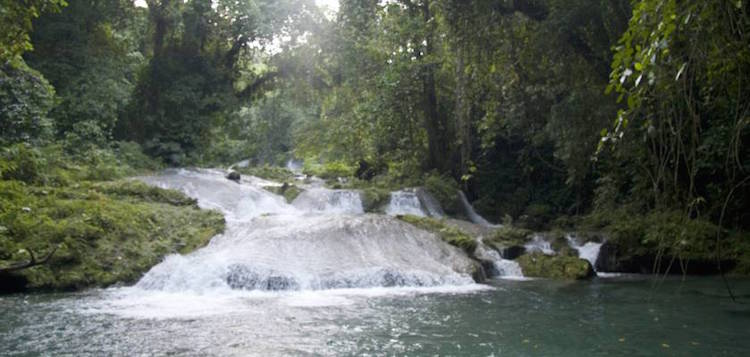 watervallen jamaica reach fall low