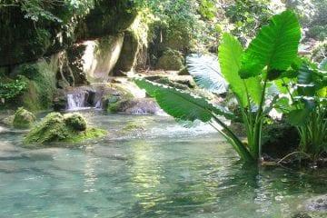 kosten excursies jamaica