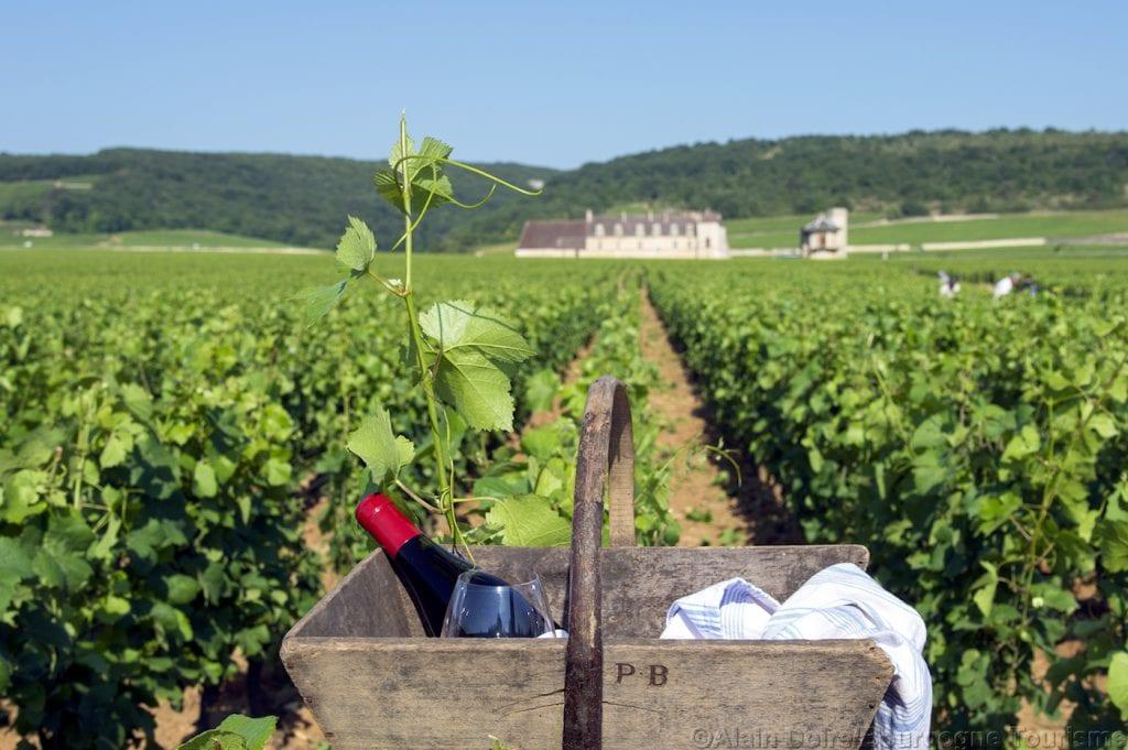 wijnvelden bourgogne frankrijk wijn