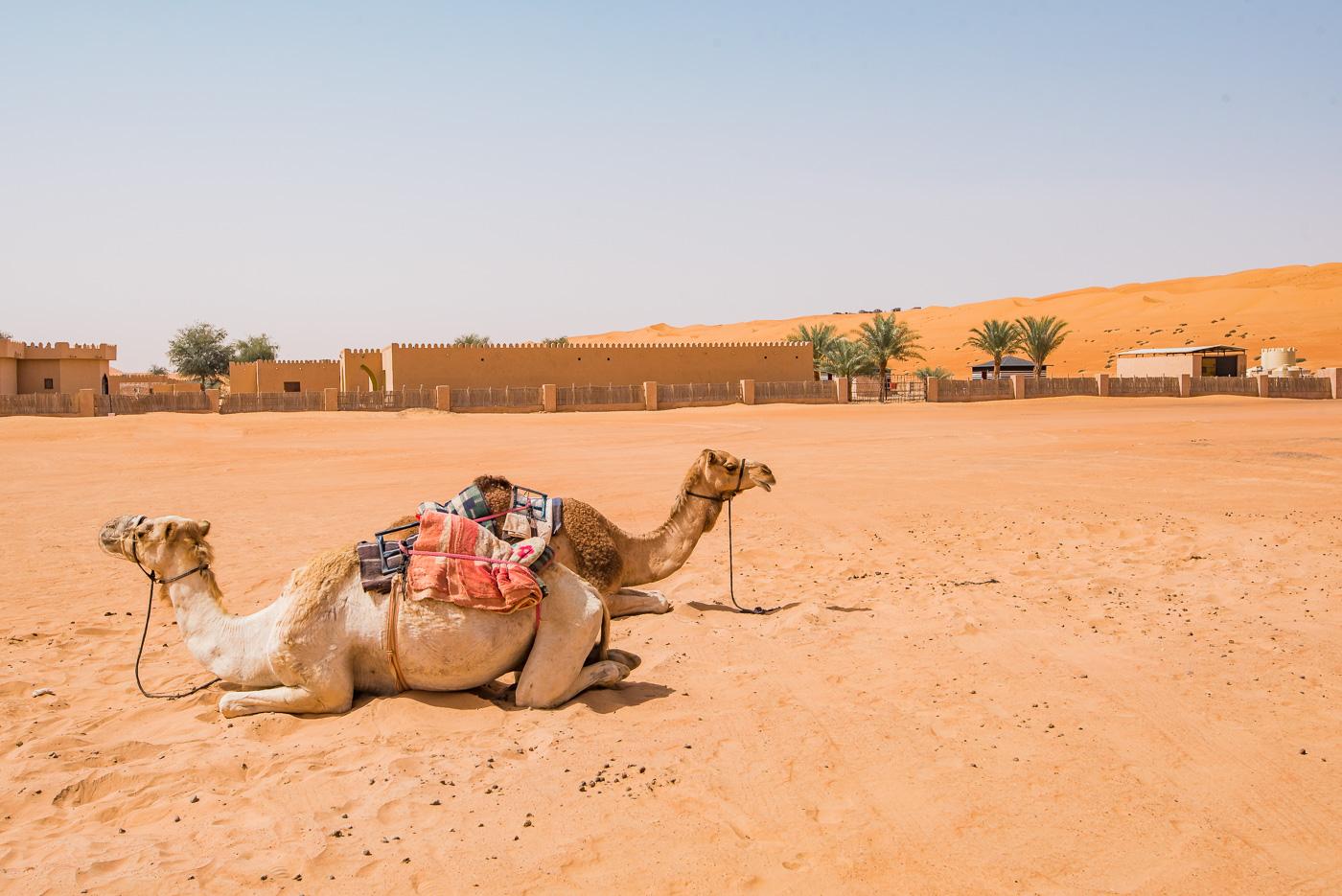 woestijn oman desert tips