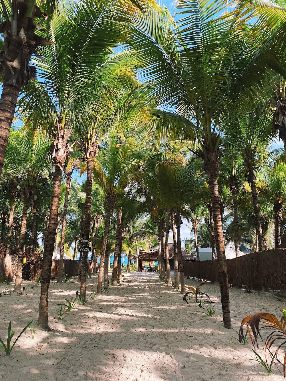 yucatan-mexico-tips