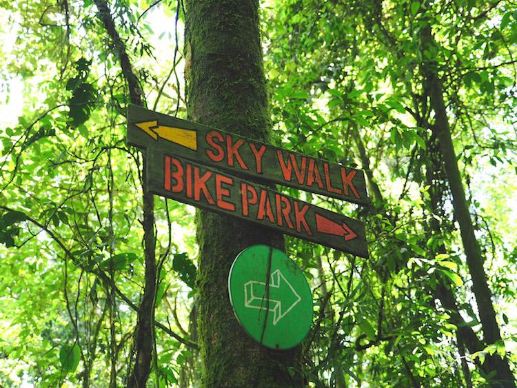 zip lining costa rica sky walk hike hangbruggen